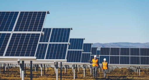 Champs de panneaux solaires avec ouvriers et ingénieurs marchant