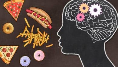 Dessin d'un cerveau face à a de la nourriture