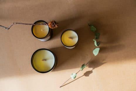 Trois bougies naturelles vues de haut avec tige d'eucalyptus
