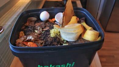 Bac de bokashi rempli de coquilles d'oeuf, peau de banane, décehts organiques
