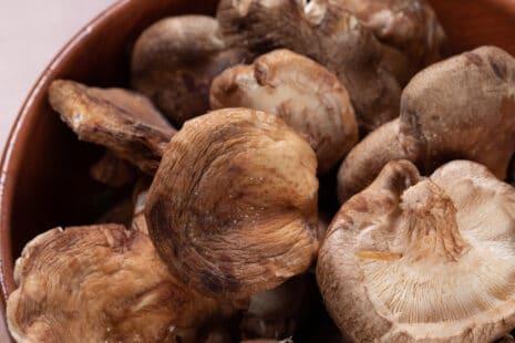 Champignons shiitake crus dans une assiette en gros plan