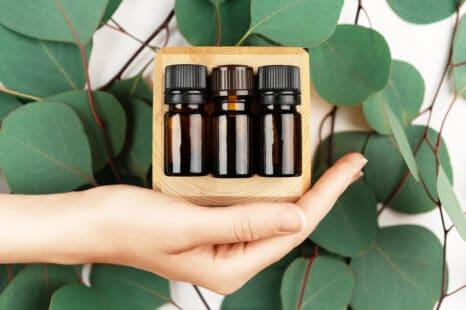Trois flacons d'huile essentielle dans une main sur fond de branches d'eucalyptus