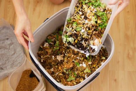 Déchets organiques versés avec une pelle en plastique dans un bac de compostage bokashi