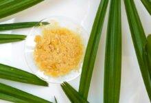 Cire en paillettes dans une assiette entourée de feuilles de palmier