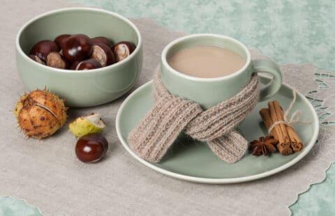 Chataigne dans un bol et tasse de chocolat à la chataigne entourré d'une écharpe tricotée